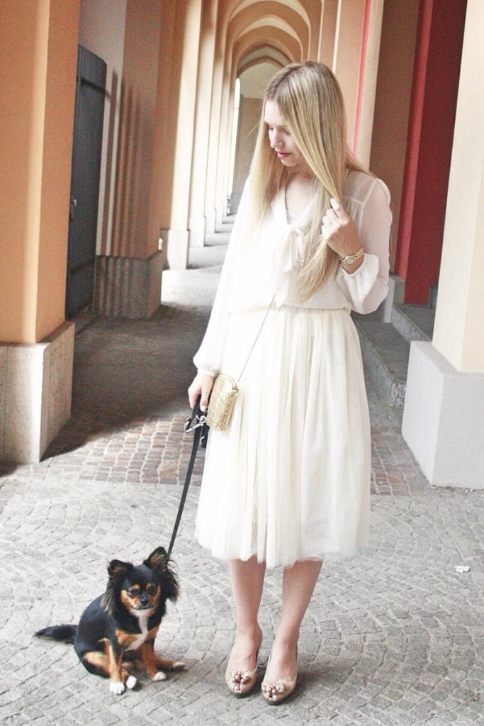 Franziska Elea Chihuahua Hazel München