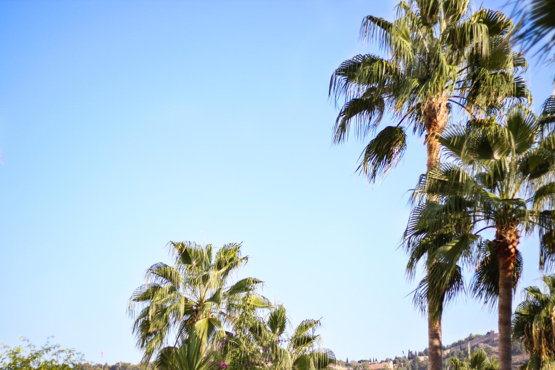franziska-elea-deutsche-blogger-modeblog-fashionblog-muenchen-urlaub-2016-sommer-pool-strand-beach-hotel-tuerkei-vacation-palmen-sonne-kleopatrabeach