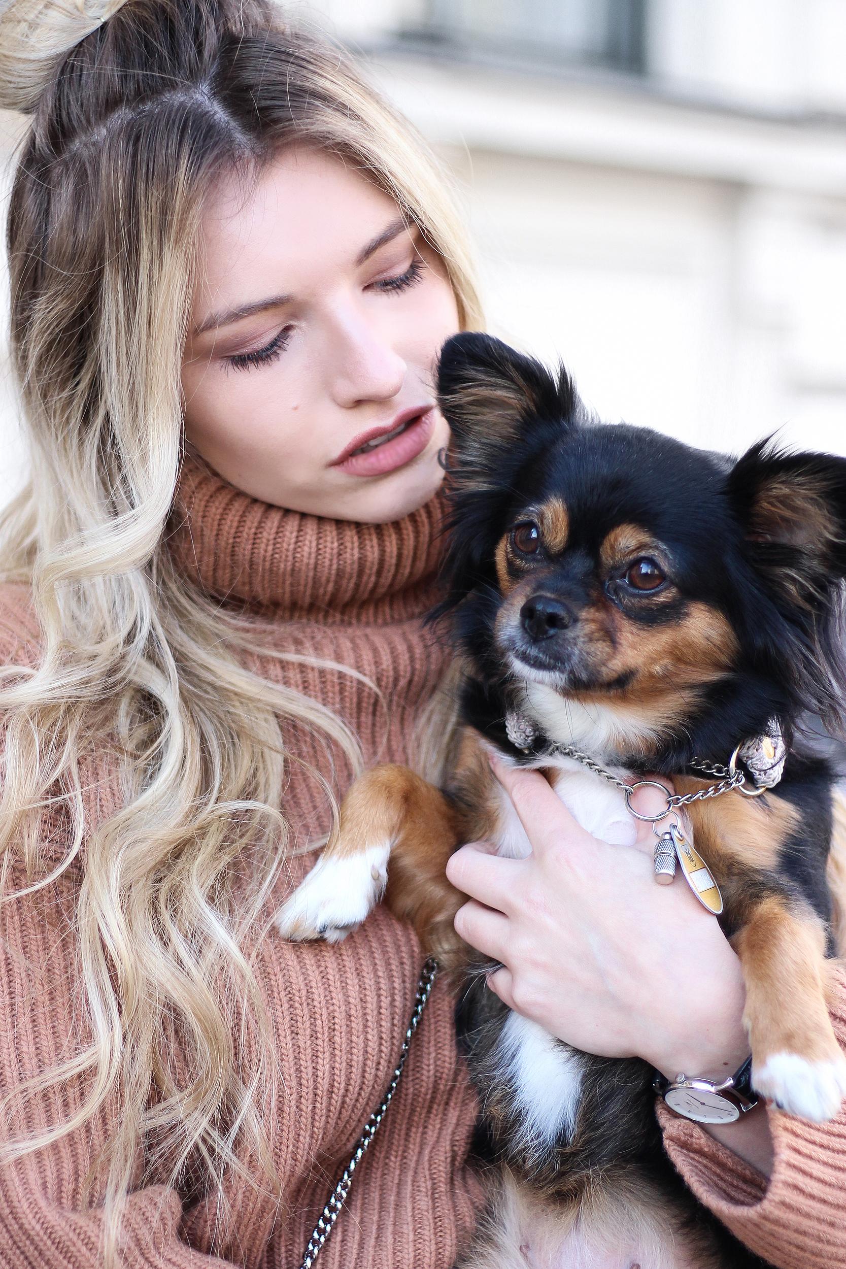 franziska-elea-blogger-aus-muenchen-fashionblog-mini-rock-fashionblogger-rollkragen-pullover-brauner-pullover-strick-grobstrick-hund-chihuahua-mix