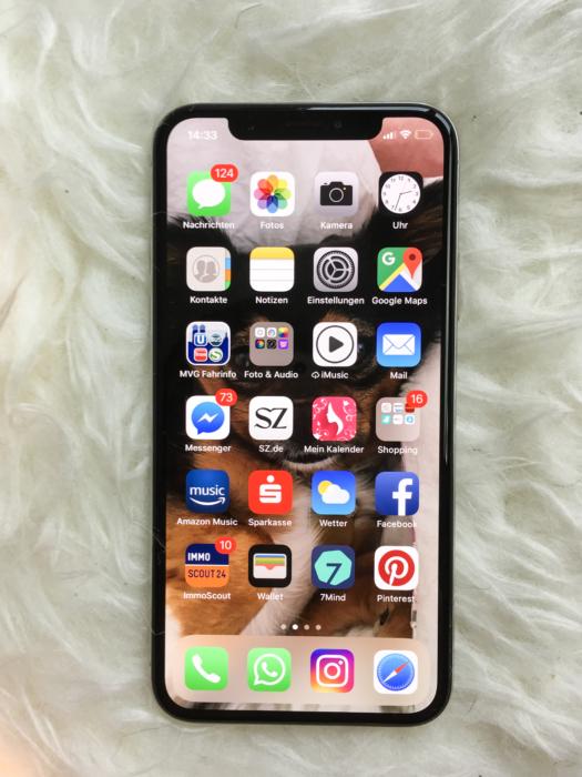 Iphone x vorteile nachteile